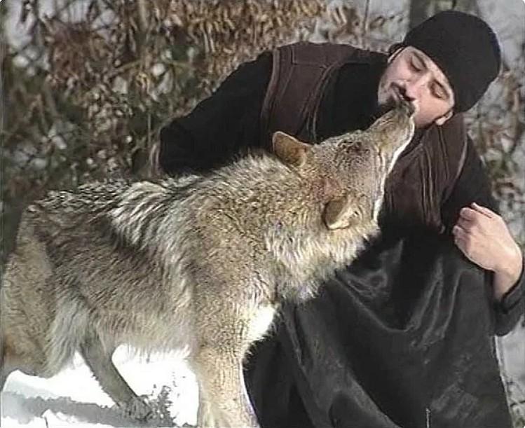 Sur les chemins de la vie spirituelle… avec les loups !
