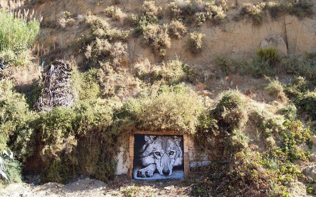 Street Art & Wolves